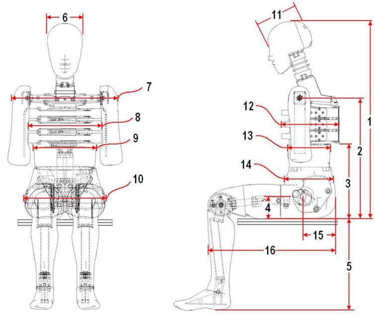 Схемы измерений внешних габаритов и испытания шеи манекена EuroSID-2 на изгиб