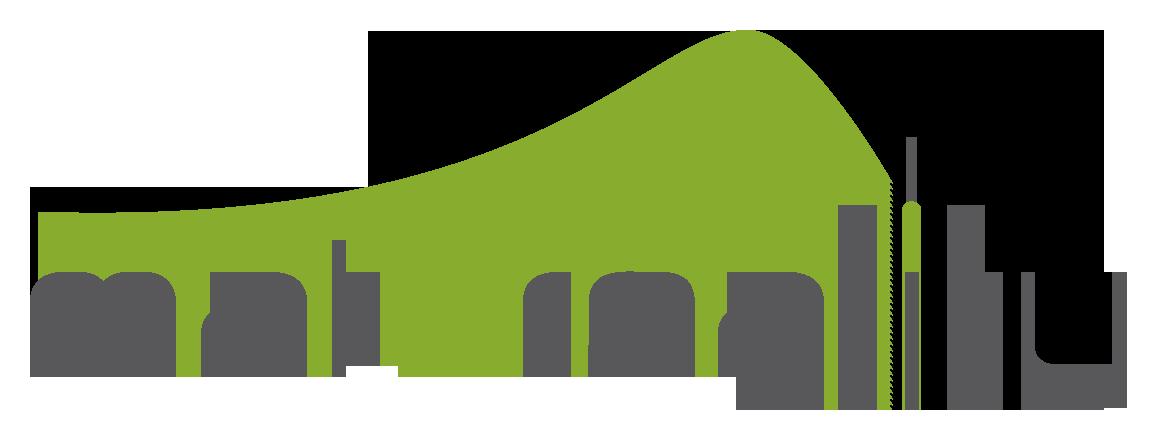 Логотип Materiality